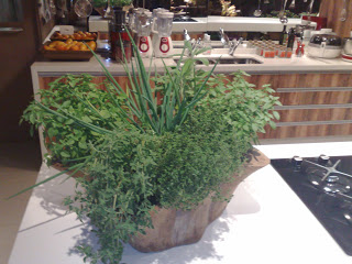 Feng Shui Energia verde na cozinha