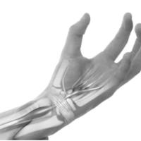6 posturas do Yoga para dores nos punhos