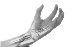 ilustração de mão transparente mostrando os nervos e ossos da articulação do punho